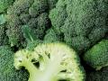 broccoli-02